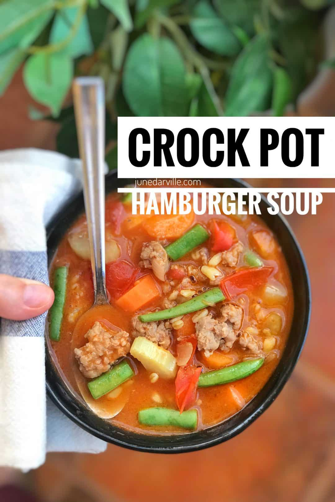 A hearty and chunky hamburger soup with beef mince, canned tomatoes, fresh vegetables and wheat berries... What a delicious wholesome meal!