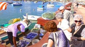 Are you looking for fresh fish in Marsaskala? It won't get any better than this! Don't forget to check out the Sunday morning Fish Market in Marsaxlokk if you want even more variety...
