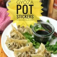 Pot Stickers Recipe (Japanese Gyoza)