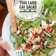 Thai Larb Gai (Spicy Chicken Salad)