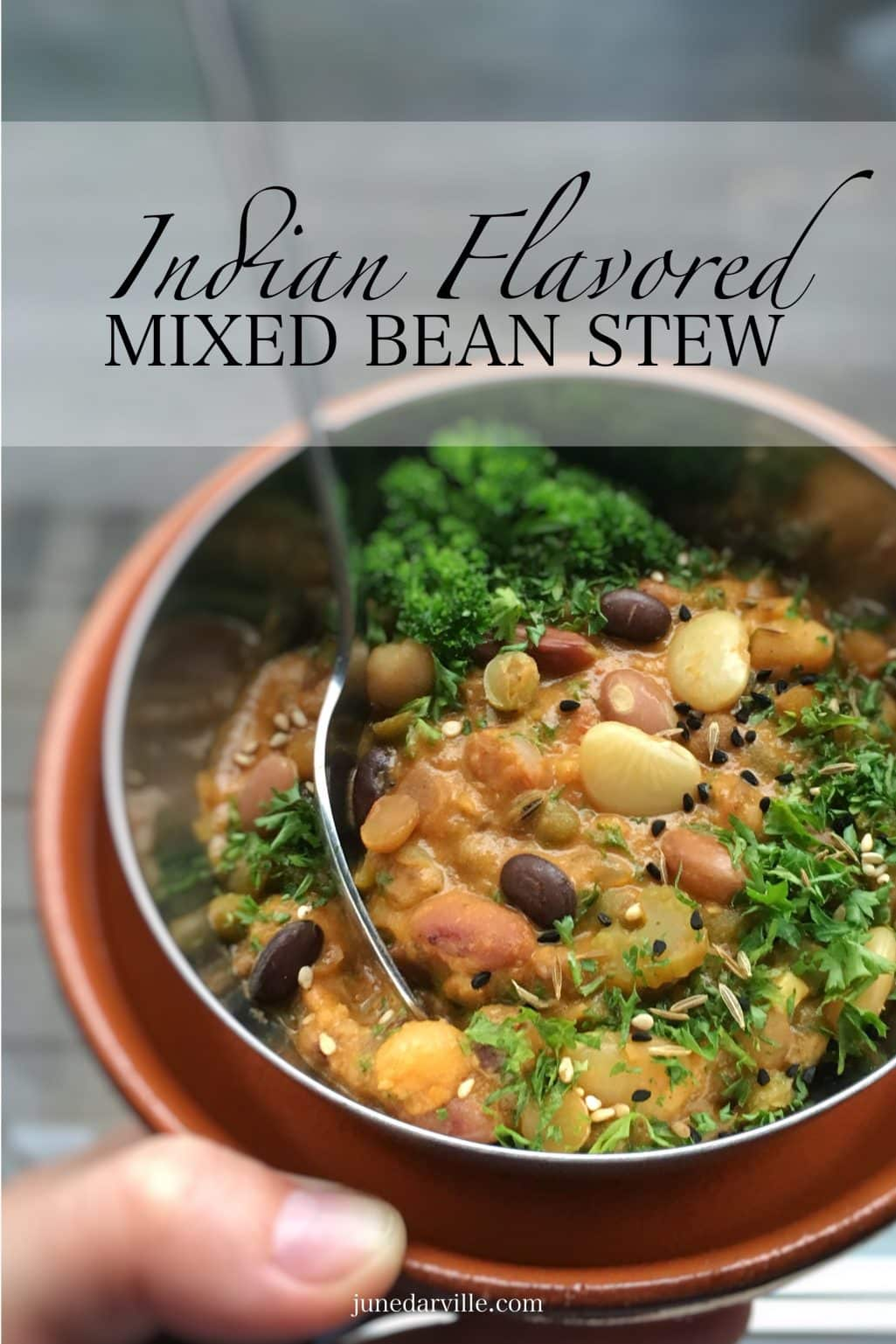 I used a bunch of Indian spices here in combination with dried beans, tomatoes and yogurt... this mixed bean stew is deliciously spicy and creamy!