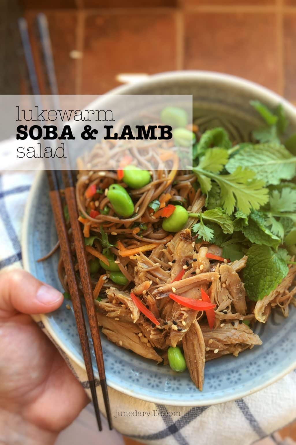 Lukewarm Shredded Lamb Salad with Soba Noodles & Soy Sauce