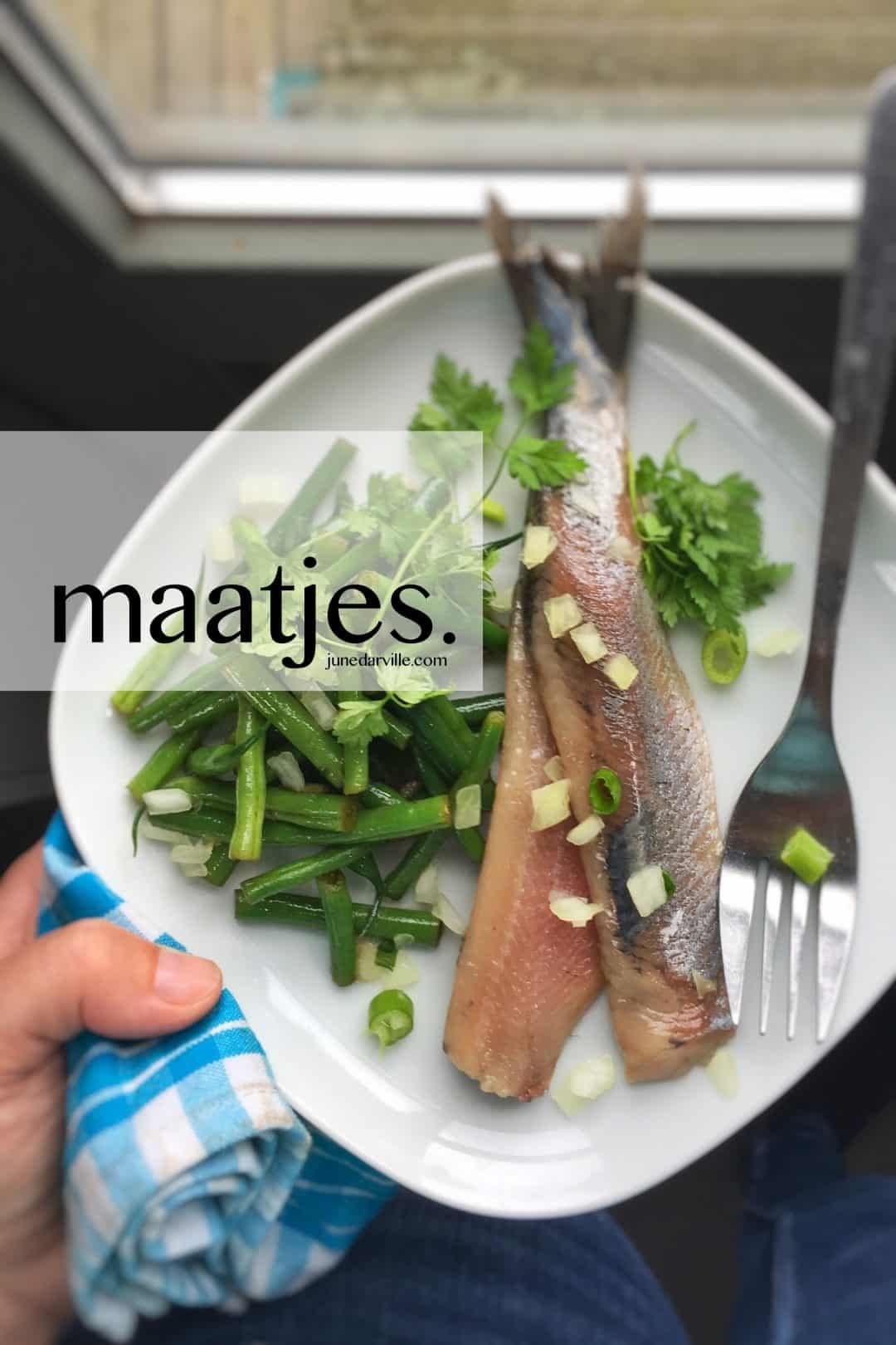 What are maatjes, Dutch new herring and matjes herring?