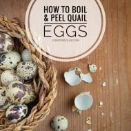 How To Boil And Peel Quail Eggs