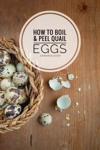 Say goodbye to the tantrums and f-words: here's how to boil and peel quail eggs easily! Drop dead simple and fail proof... you can thank me later!