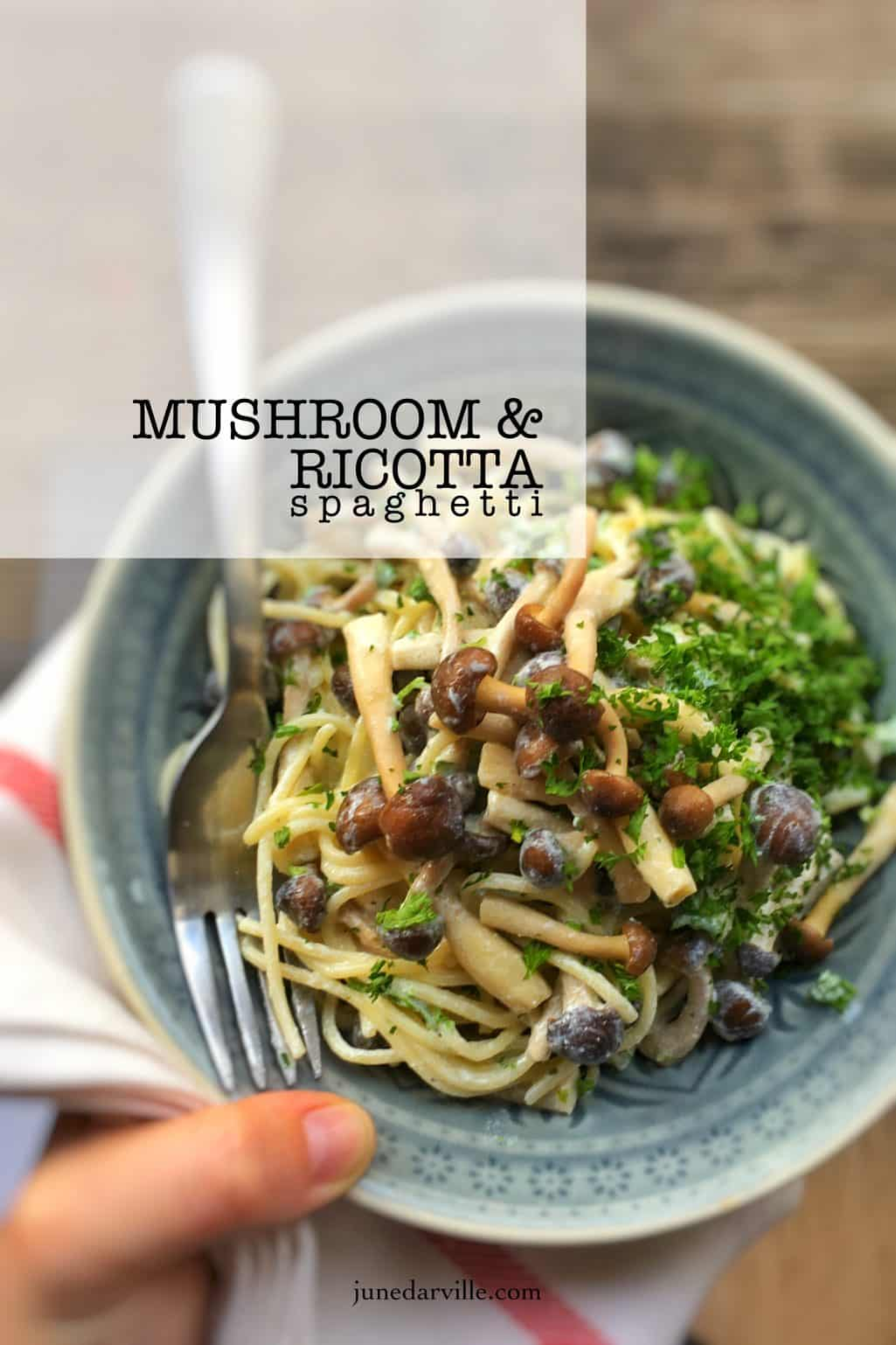 Here's another great dinner with leftovers! Let's make a creamy mushroom spaghetti with a bunch of garlic and ricotta sauce!