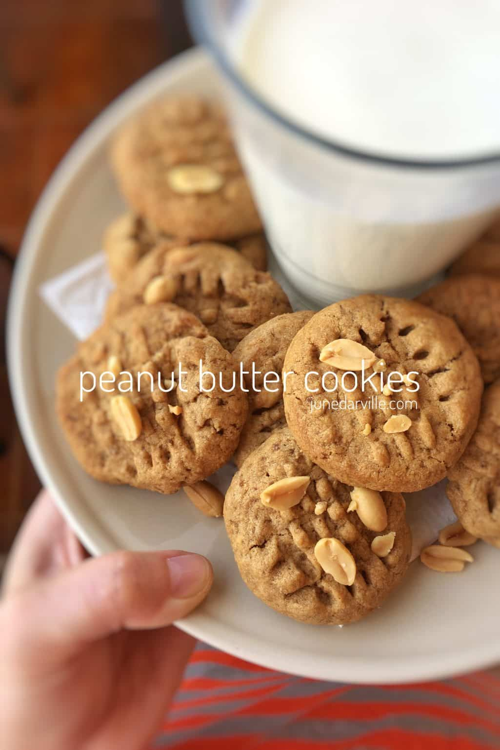 The best easy peanut butter cookies you will ever make! This cookie recipe is a fun thing to do with kids during a rainy weekend...