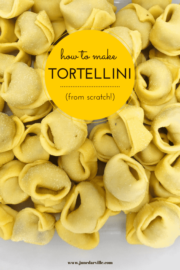 How to make tortellini from scratch: a step-by-step picture guide to show you how to fold fresh tortellini the right way!
